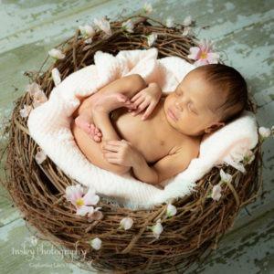 Fort Mill, SC, Tega Cay, SC, Charlotte, NC newborn baby portrait