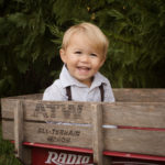 Christmas Card Mini Sessions toddler pictures