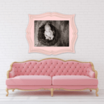 Baby Girl photos Fort Mill, SC pink sepia color