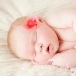 Newborn Portraits baby girl